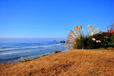 The Studio at Bear's Head - Arch Cape Vacation Rental