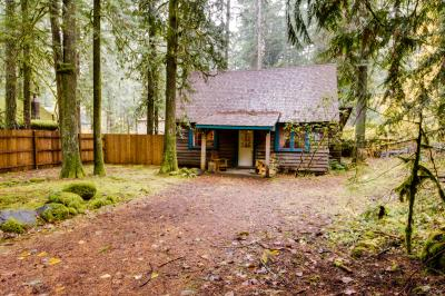 Old Smokey Cabin - Rhododendron Vacation Rental