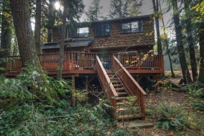 Mountain Air Lodge - Brightwood Vacation Rental