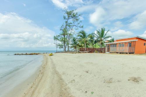 Orange Cuttlefish @ Oceanus Cabanas - Dangriga, Belize Vacation Rental