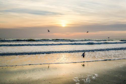 Beach Lookout - Cocoa Beach, FL Vacation Rental