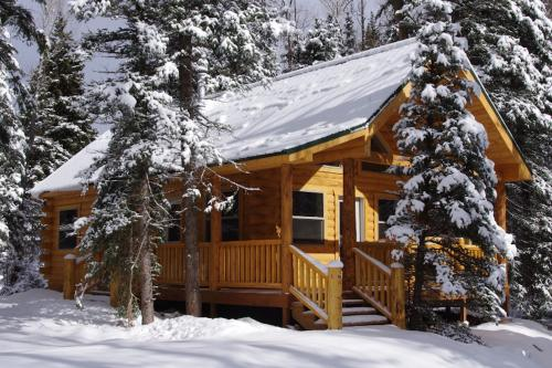 Moose - South Fork, CO Vacation Rental