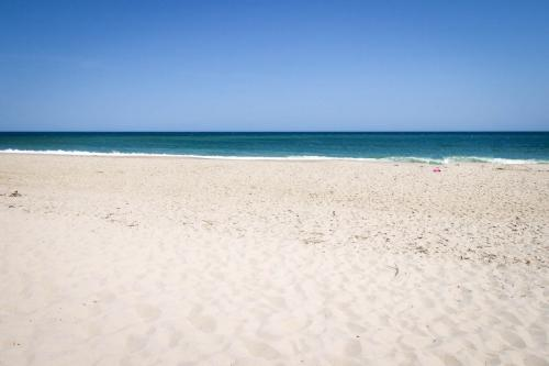 Nauset Beach Buddy  -  Vacation Rental - Photo 1