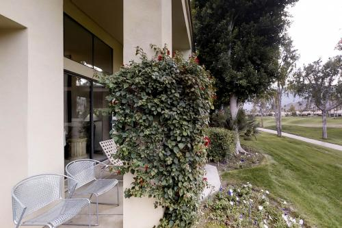 Mountain View Paradise  - La Quinta, CA Vacation Rental