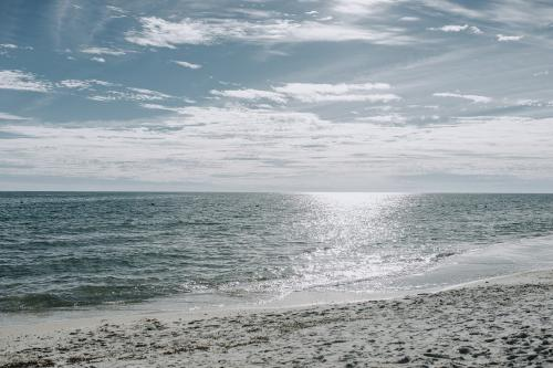 Cactus Cove Hangout - Gulf Shores, AL Vacation Rental