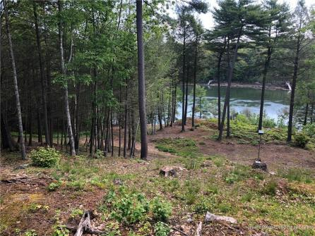 Wooded Lane - Wiscasset, ME Vacation Rental