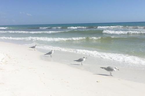 Sandpiper #8222 - Destin, FL Vacation Rental