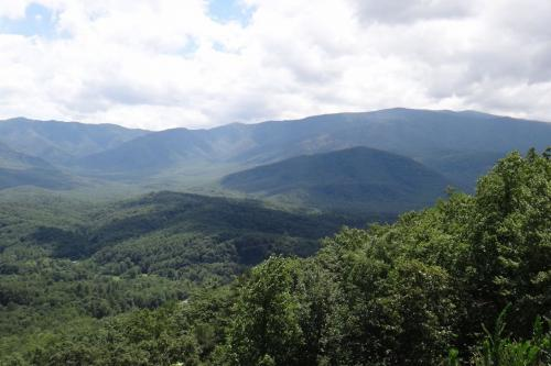 Can't Bear to Leave - Sevierville, TN Vacation Rental