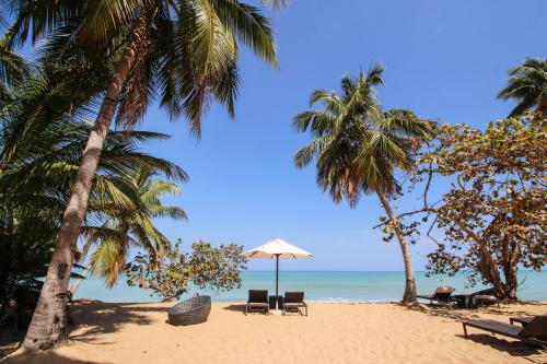 Amazing Two-Bedroom Sublime - Las Terrenas, Dominican Republic Vacation Rental