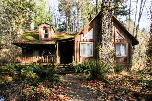 Stove & Stream Cabin - Rhododendron Vacation Rental
