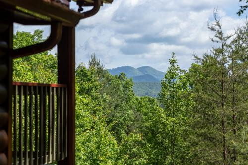 Day Dreamer - Mineral Bluff, GA Vacation Rental