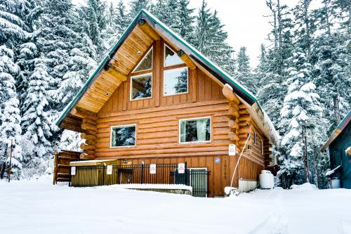 Big Bear Cabin and Little Bear Cabin -  Vacation Rental - Photo 1