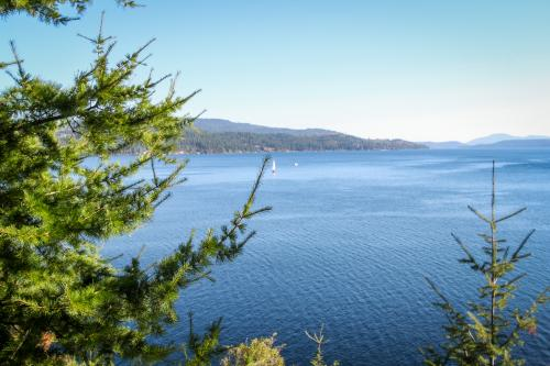 Lower Roost -  Vacation Rental - Photo 1