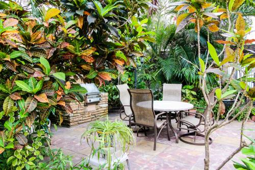 Bella Vista Beachview Studio - Hollywood, FL Vacation Rental