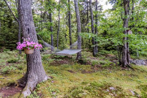 Sunshine Cottage -  Vacation Rental - Photo 1