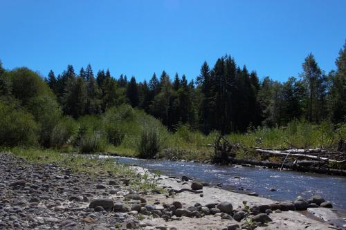 Roaring River Retreat - Rhododendron Vacation Rental