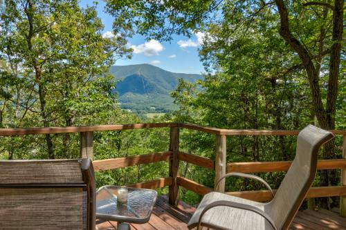 Mockingbird's View Cabin -  Vacation Rental - Photo 1