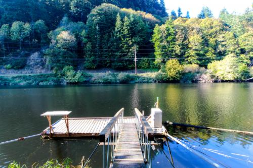 Alsea River Fishing Cabin - Waldport Vacation Rental