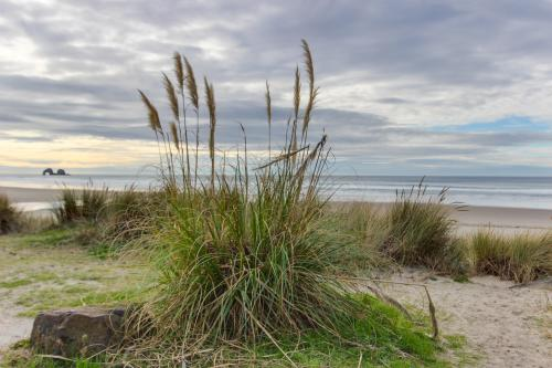 Pacific Dream - Rockaway Beach, OR Vacation Rental