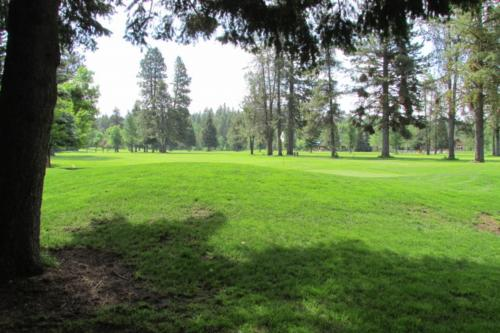 Green Briar 1 - McCall, ID Vacation Rental