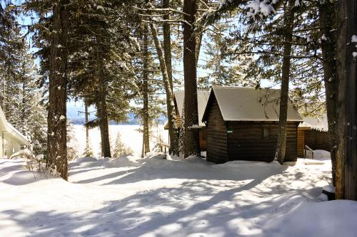 Avery West Shore Cabin -  Vacation Rental - Photo 1