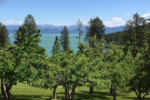 Lakeside Splendor - Lakeside, MT Vacation Rental