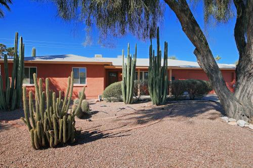 Cactus Alley -  Vacation Rental - Photo 1