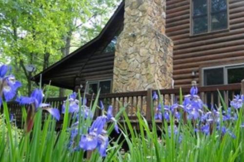Laurel Creek -  Vacation Rental - Photo 1