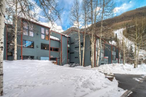 Telluride Treasure -  Vacation Rental - Photo 1