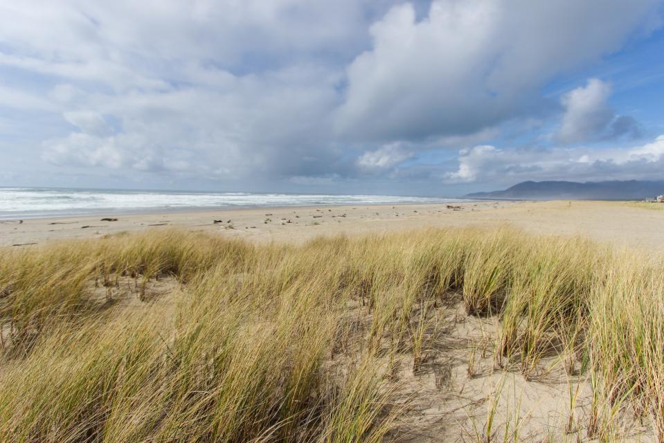 Beach Whale - Rockaway Beach Vacation Rental - Photo 3