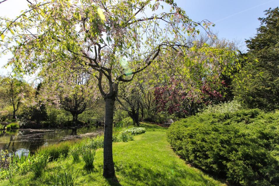 The Looks Pond Garden House - West Tisbury Vacation Rental - Photo 43