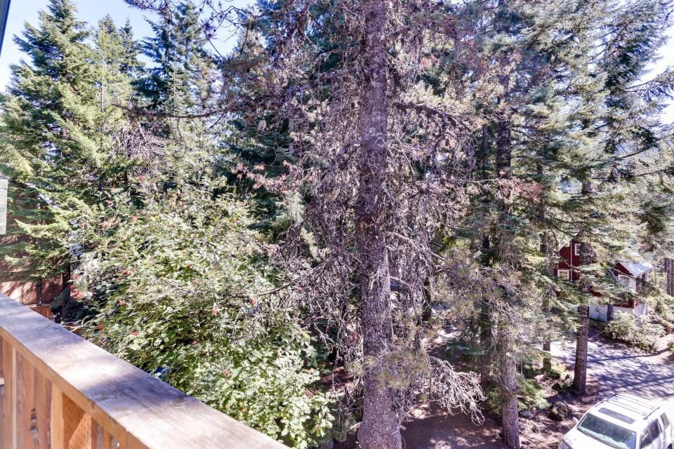 Mt Hood Chalet Vacation Rental - Government Camp Vacation Rental - Photo 38