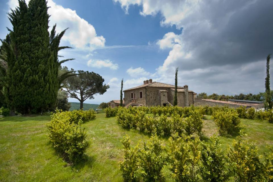 Vine Brunello - Florence Vacation Rental - Photo 5