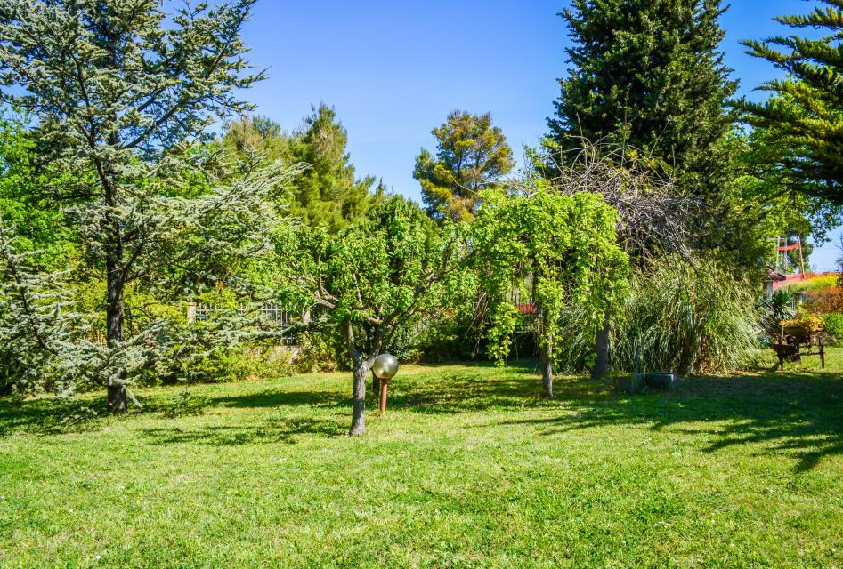 Villa UDMA - Apartment in Villa with Garden - Senigallia Vacation Rental - Photo 20