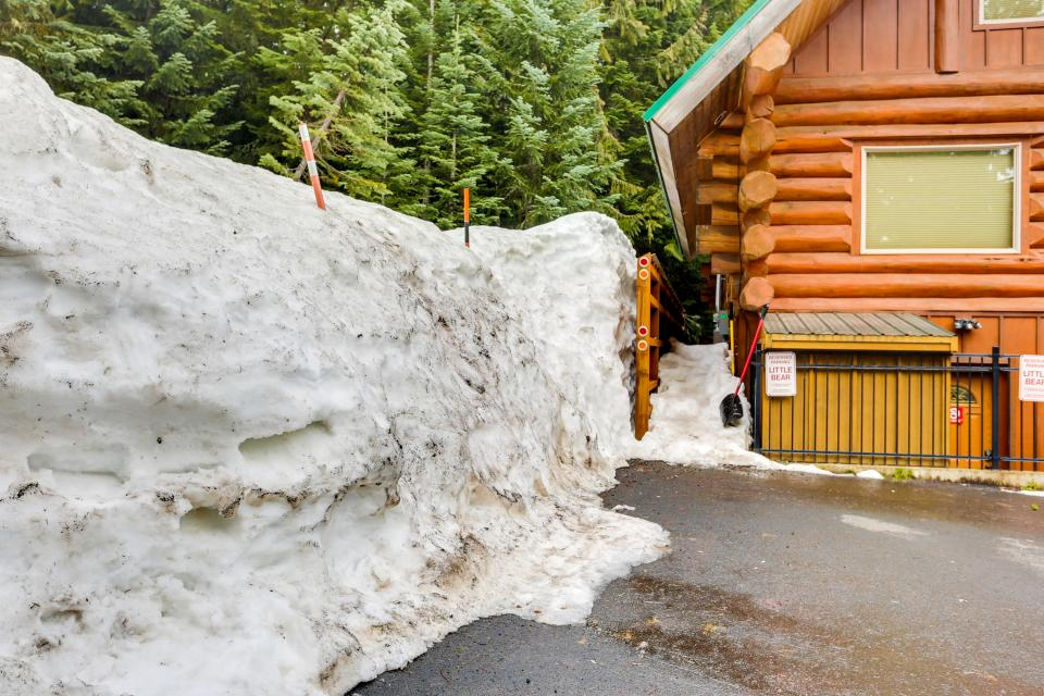 Little Bear Cabin - Government Camp Vacation Rental - Photo 25