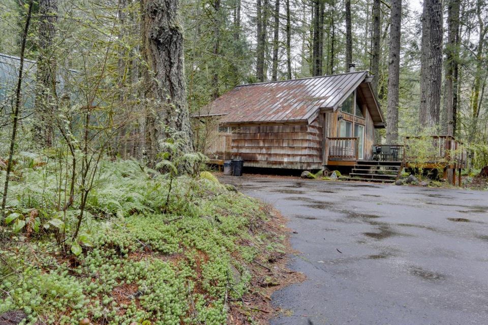 Pappy's Cabin - Brightwood Vacation Rental - Photo 41