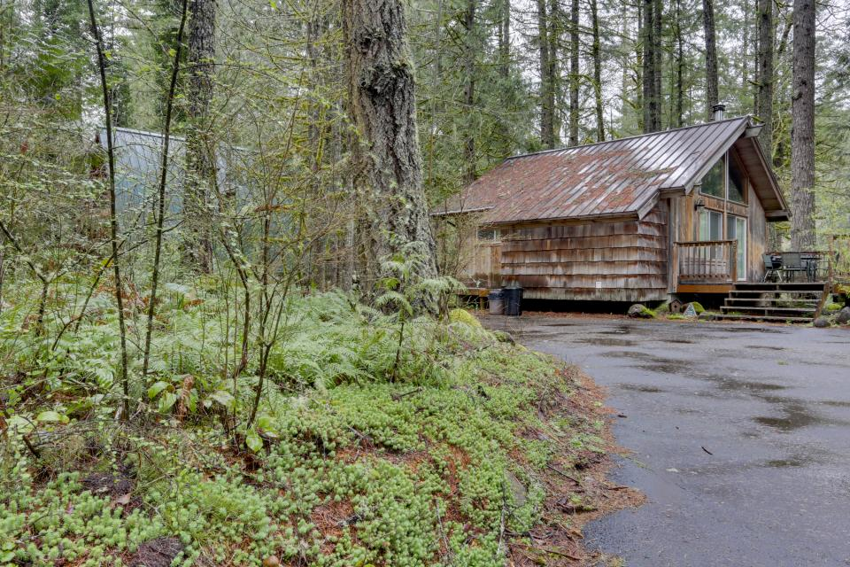 Pappy's Cabin - Brightwood Vacation Rental - Photo 37