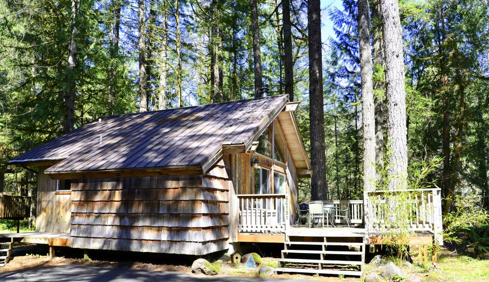 Pappy's Cabin - Brightwood Vacation Rental - Photo 39