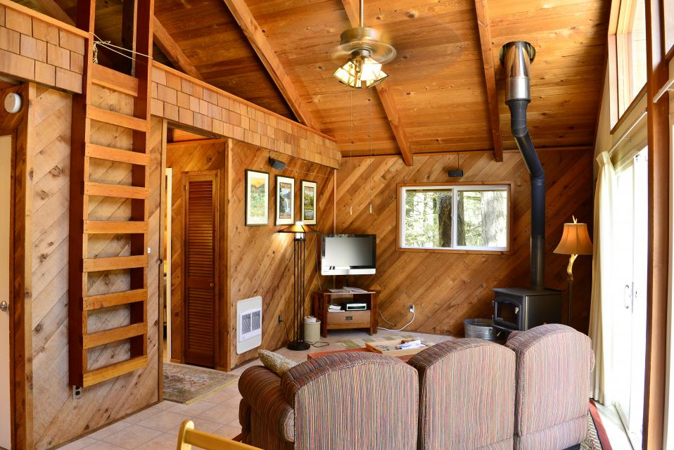 Pappy's Cabin - Brightwood Vacation Rental - Photo 8