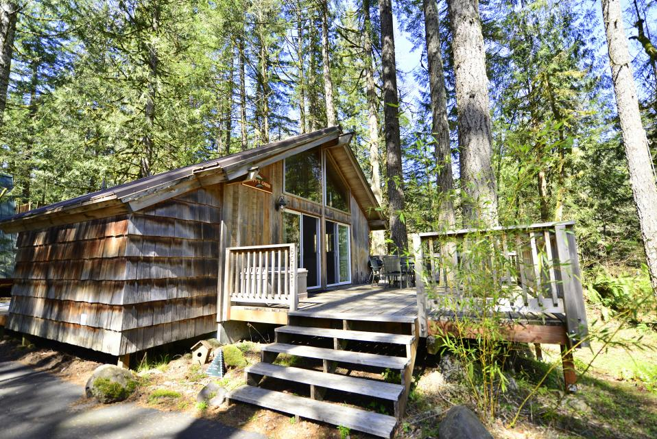 Pappy's Cabin - Brightwood Vacation Rental - Photo 1