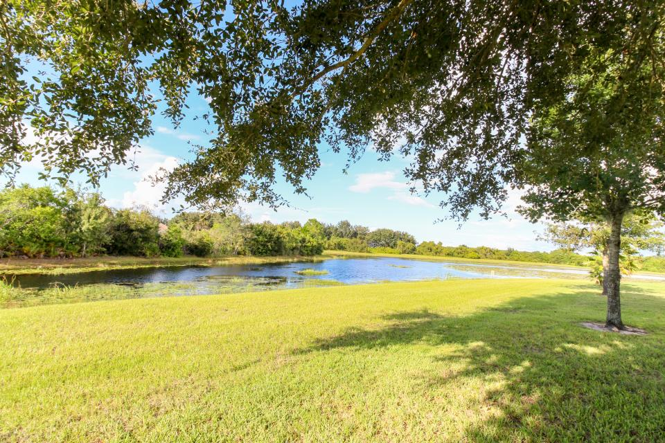 Turtle Paradise - Clermont Vacation Rental - Photo 4