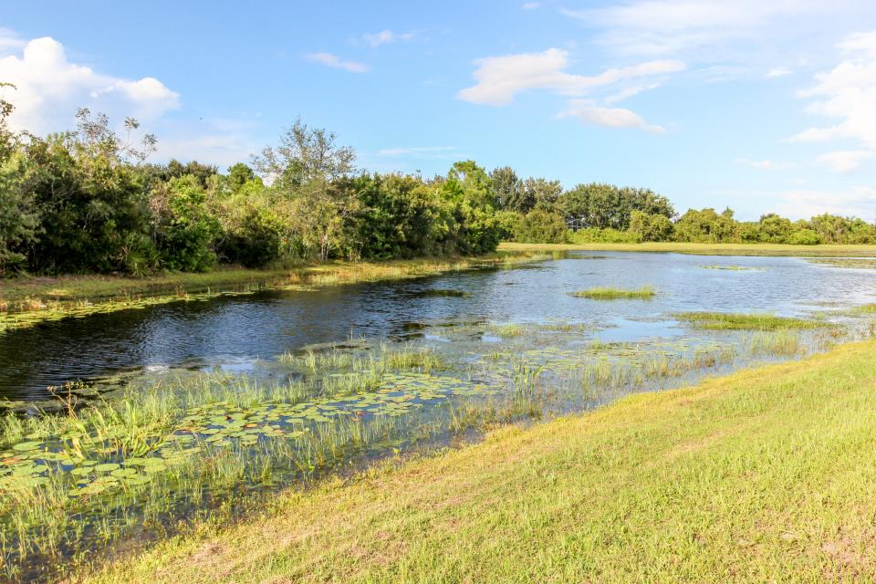 Turtle Paradise - Clermont Vacation Rental - Photo 23