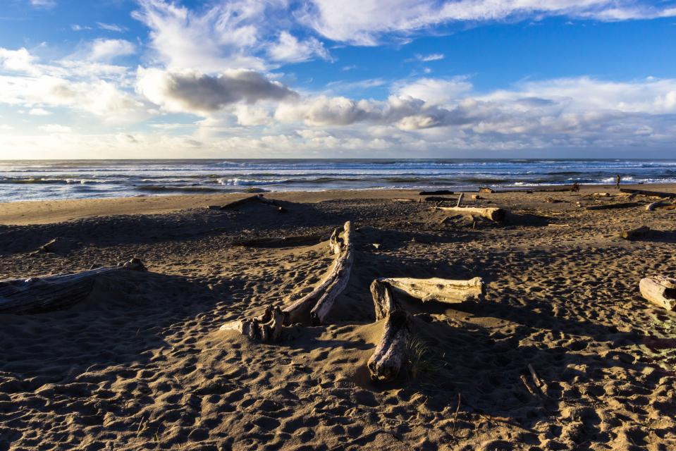 The Whale (Lower) - Lincoln City Vacation Rental - Photo 29