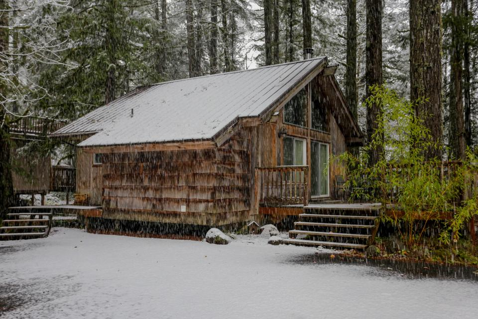 Pappy's Cabin - Brightwood Vacation Rental - Photo 45