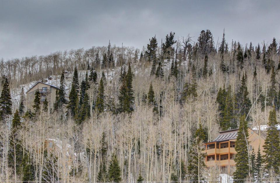 The Viewtiful Brian Head Cabin - Brian Head Vacation Rental - Photo 60