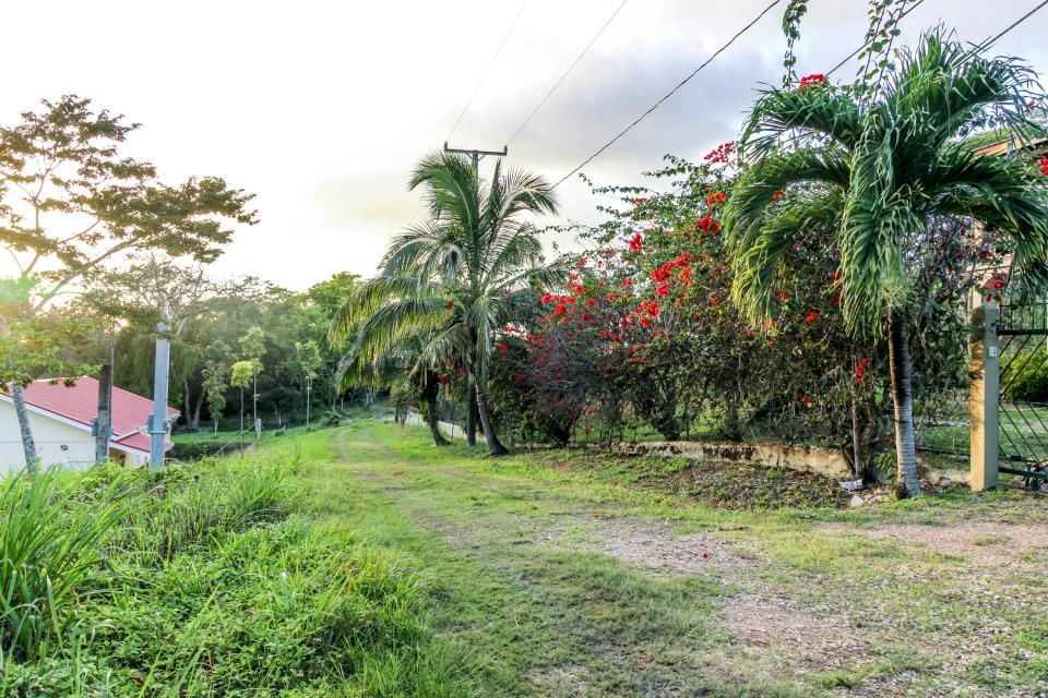 Suite @ Villa Maya - San Ignacio Vacation Rental - Photo 24