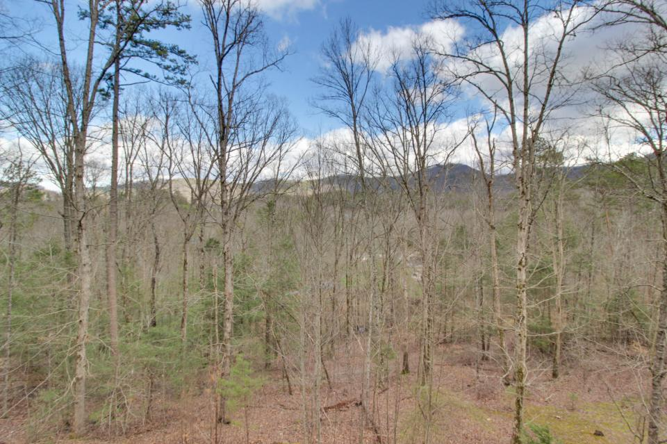 Mountain Breeze Cabin - Sevierville Vacation Rental - Photo 47