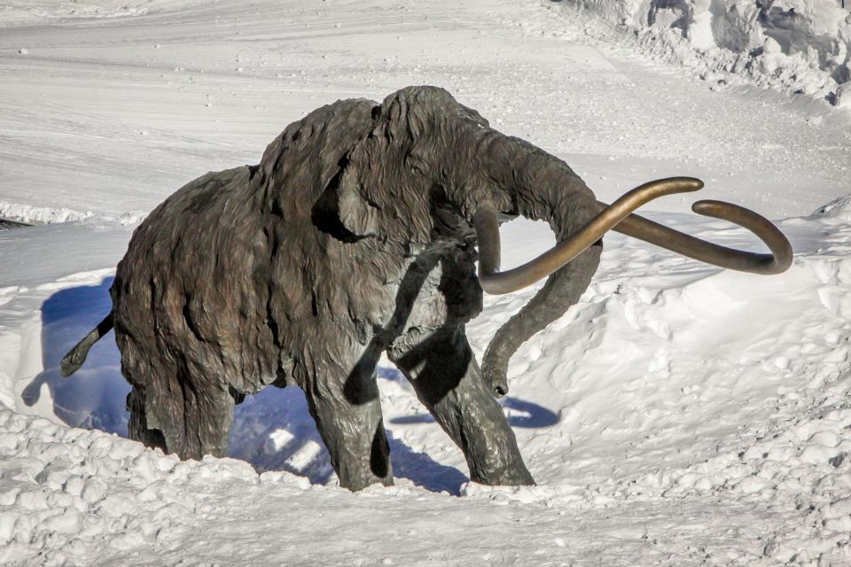 Sierra Megeve 6 - Mammoth Lakes Vacation Rental - Photo 32