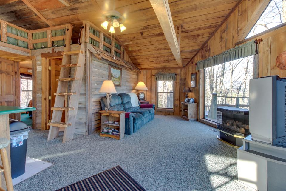 Mockingbird's View  - Sevierville Vacation Rental - Photo 3