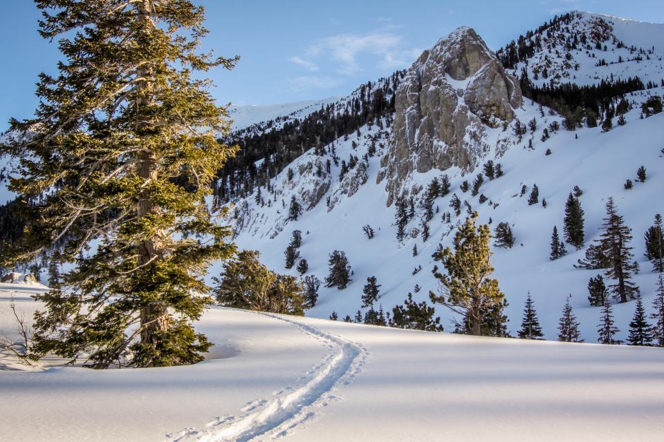 La Vista Blanc 39 - Mammoth Lakes Vacation Rental - Photo 32